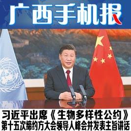 广西手机报10月13日