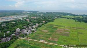 防城港:港口区建设乡风文明助推乡村振兴