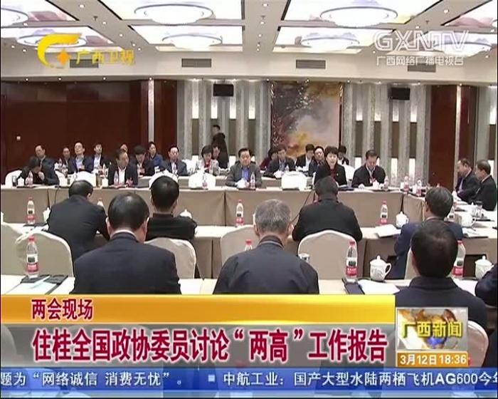 """【两会现场】住桂全国政协委员讨论""""两高""""工作报告"""