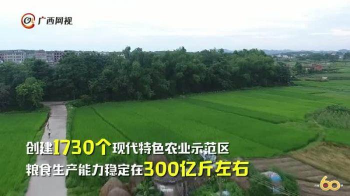 60秒看广西之农业篇