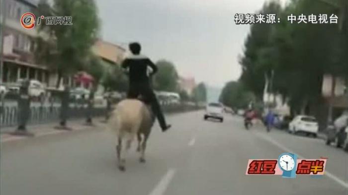 男子酒驾被查后又骑马上路 结果悲剧了