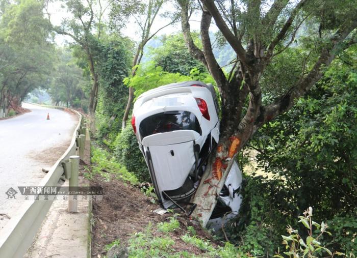 高清组图:小车飞出护栏撞上大树 驾驶员不幸身亡