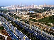 陕西合阳:生态屏障建设见效