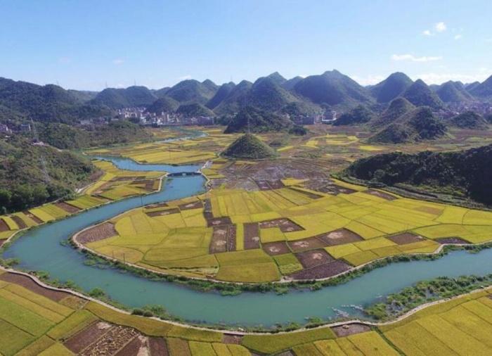 云南:金秋田野稻谷丰收
