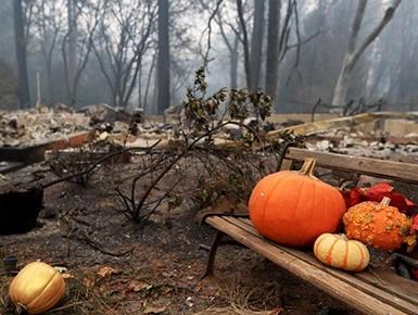 加州山火遇难人数升至56人