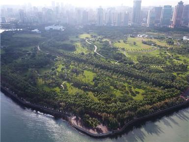 海南海口:湿地如画城中绘