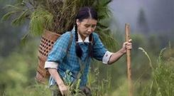 主旋律电影《凤仪》全国首映谱写绿色赞歌