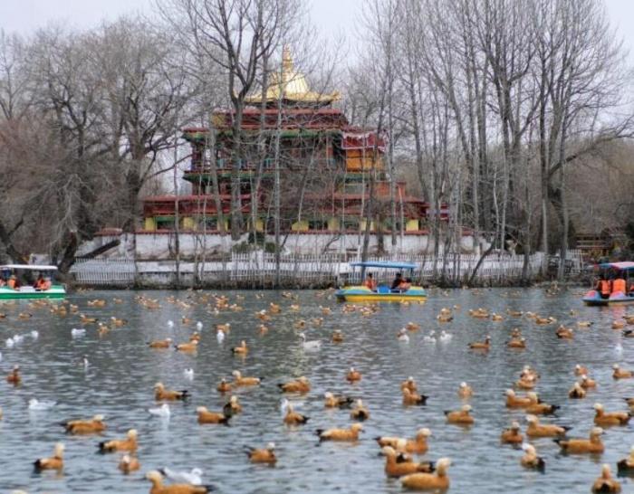 民众布达拉宫脚下享受春日时光