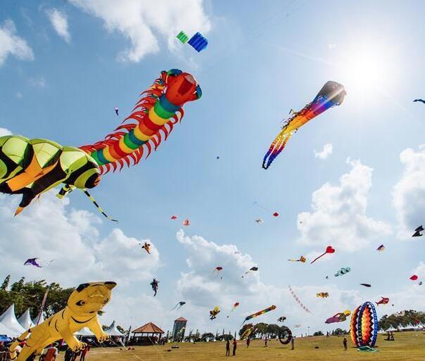 第24届巴西古当国际风筝节