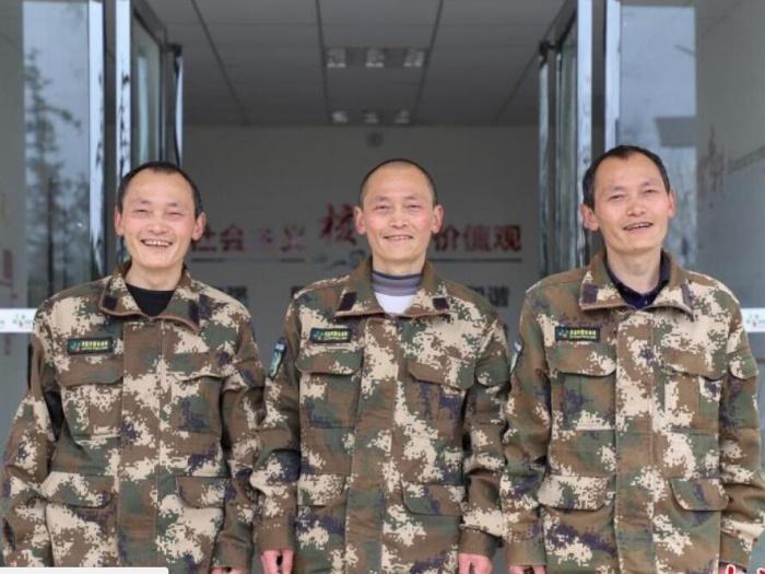护林38年的孪生三兄弟