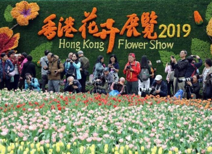 香港花卉展览开幕