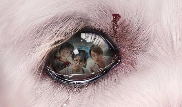 《狗眼看人心》定档4月20日 忠犬舍命救主戳泪