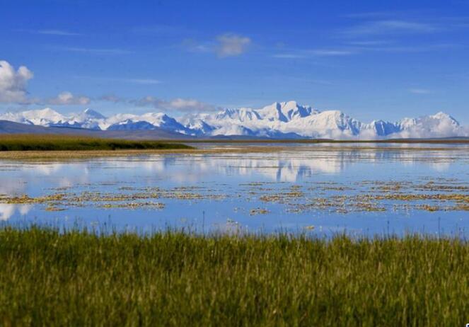 今日西藏��保护生态环境 建设美丽西藏