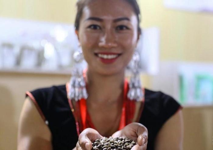 一粒咖啡种子的成长