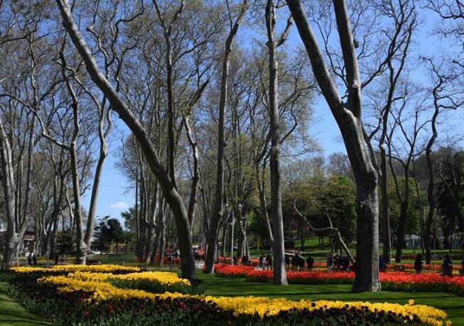 世界园林巡礼——伊斯坦布尔居尔哈内公园