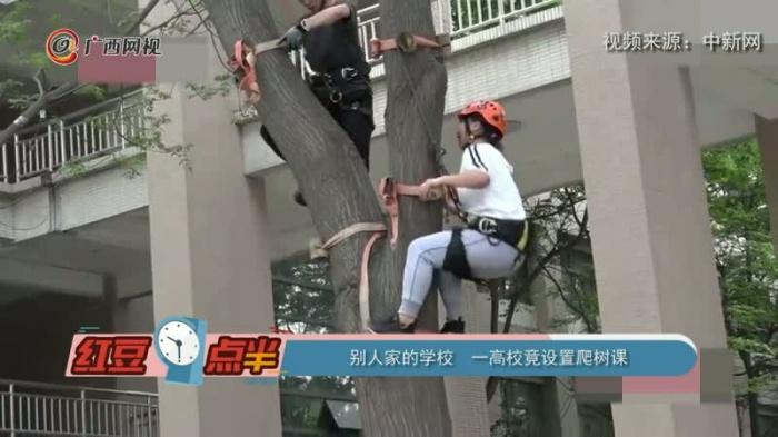 别人家的学校 一高校竟设置爬树课