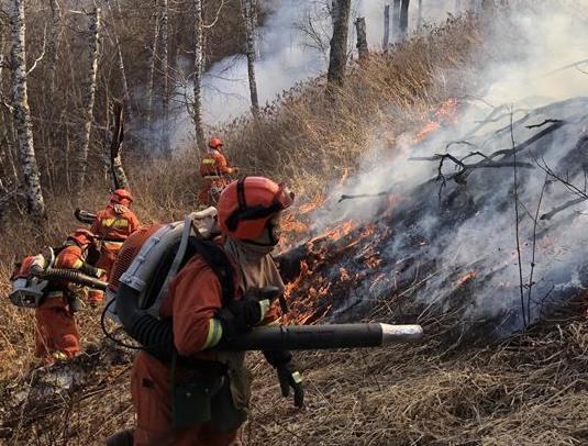 內蒙古阿爾山好森溝林場發生森林火災 已投入近千人撲救