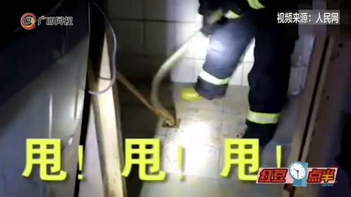 大蛇钻进居民家下水道不出来 消防员甩!甩!甩!