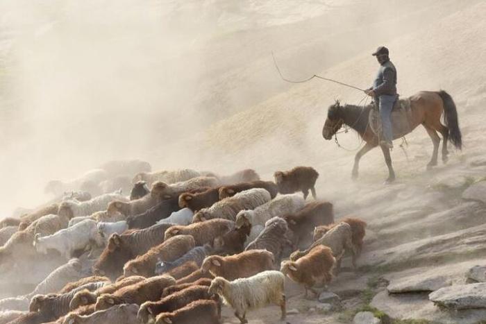 哈萨克牧民转场夏季牧场