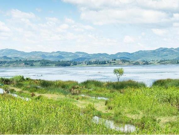 貴州威寧:草海退地還湖記