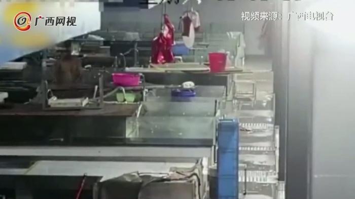 男子深夜溜进菜市砍死20多条鱼 原因竟然是……