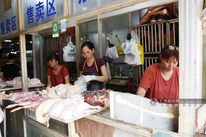 高清图集:中元节鸭子热销 邕城市民买鸭忙