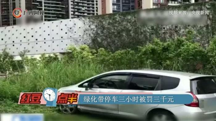 绿化带停车三小时被罚三千元