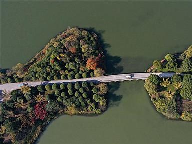 江苏昆山:湿地公园美