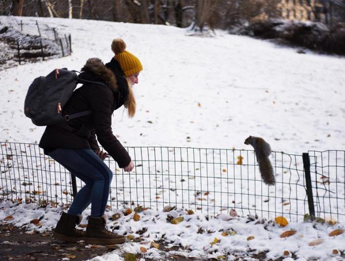 紐約:中央公園首場雪景迎游客