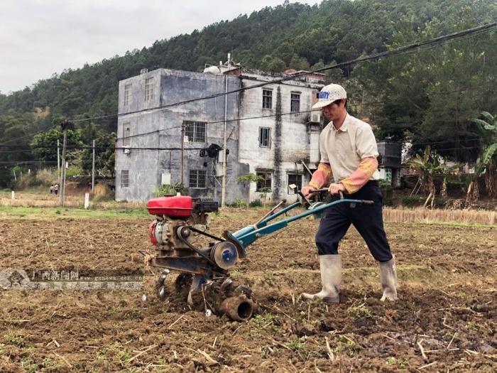 梧州龙圩区:防控疫情不松懈 促春耕不误农时