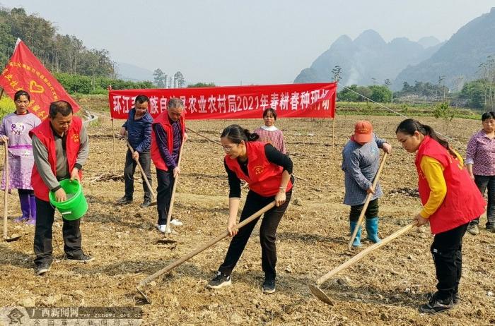 环江:农技服务到田头 助力春耕促生产
