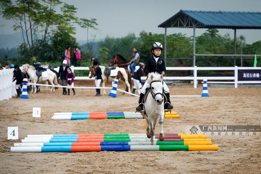 广西马术锦标赛总决赛落幕 选手邕城展马术风采