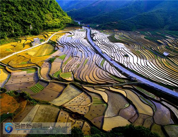 凌云:灌水后的田园 如同大地的调色盘