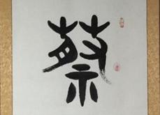 姓氏文化--蔡氏名字作品欣赏