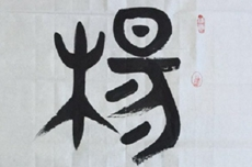 姓氏文化--杨氏名字作品欣赏