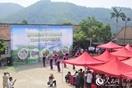 高峰青山生态美 林下经济好发展