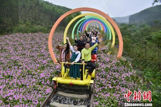 """""""煤都""""变身""""花都"""" 广西合山打造工业旅游示范区"""
