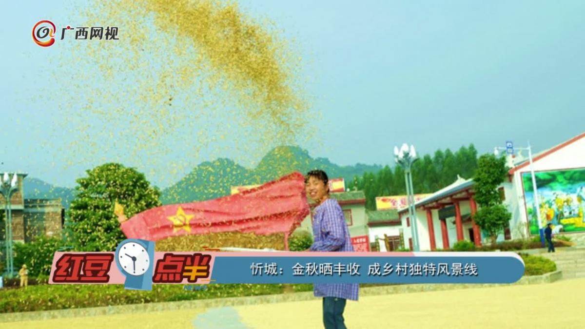 忻城:金秋晒丰收 成乡村独特风景线