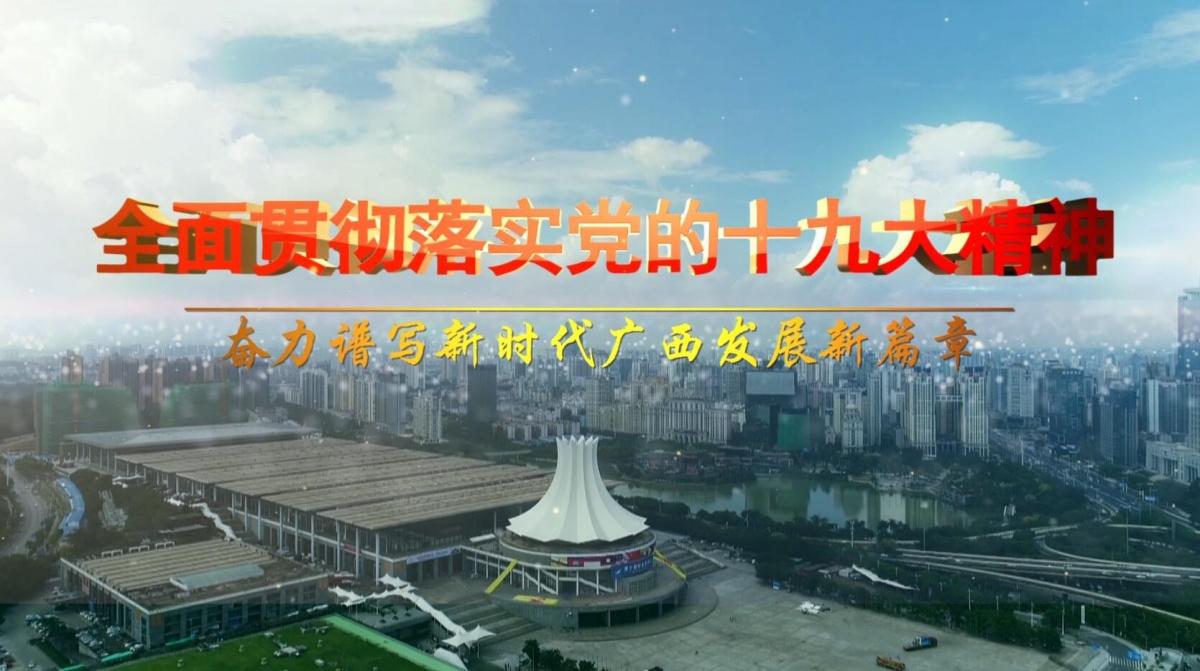 【视频】贯彻落实党的十九大精神