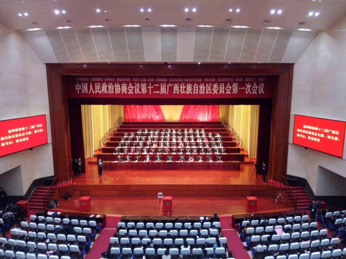 蓝天立当选自治区政协主席