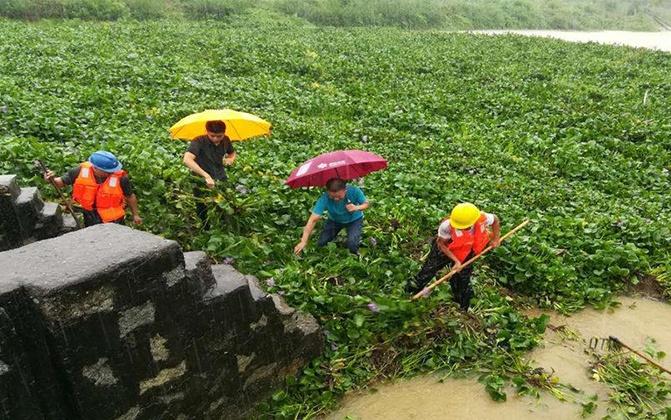 广东台山暴雨 水闸排水受阻