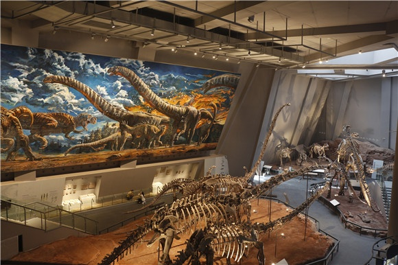 重庆自然博物馆――恐龙厅