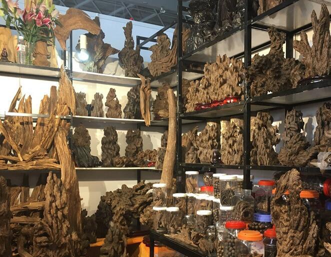 文莱馆、新加坡馆、越南馆:咖啡、红木占大半