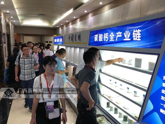 2018中国贺州石材碳酸钙产业技术交流大会开幕