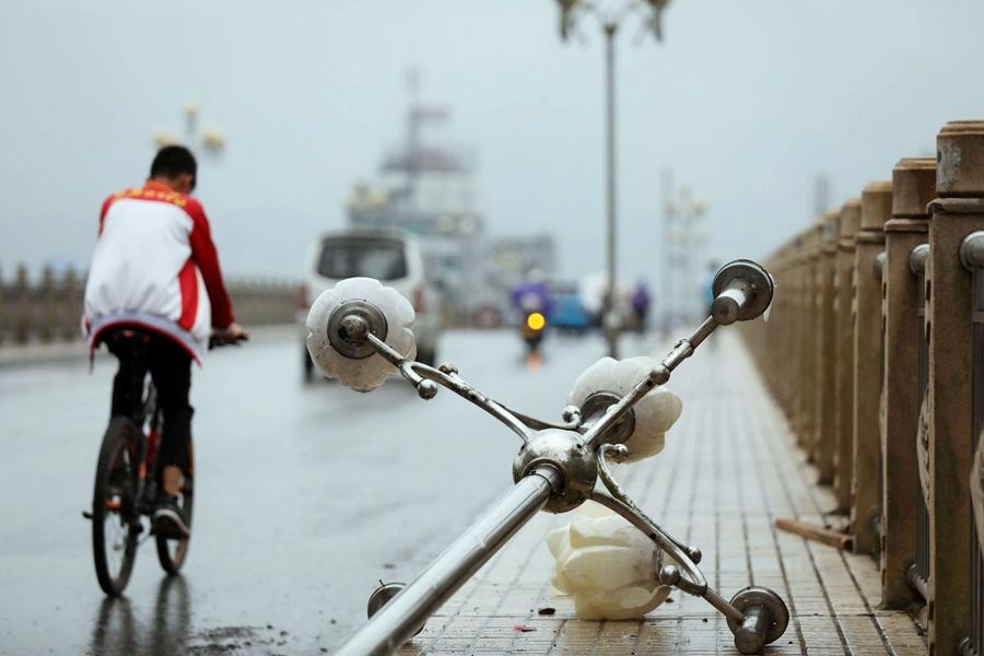 融安县出现强降雨和大风 台风过后抢修忙(组图)