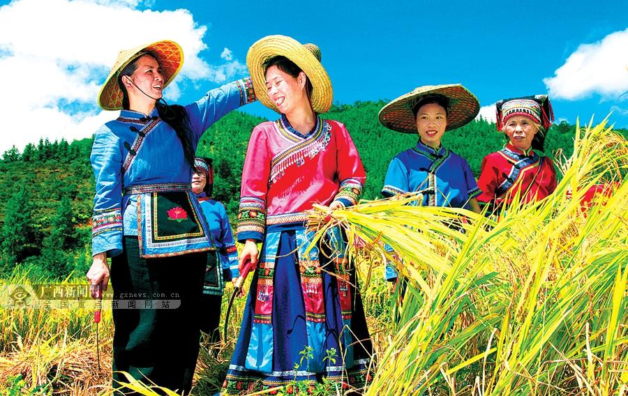 9月23日焦点图:丰收节日 欢乐八桂