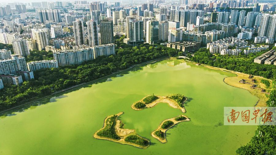 9月26日焦点图:南宁南湖公园生态鸟岛陆续修筑完成