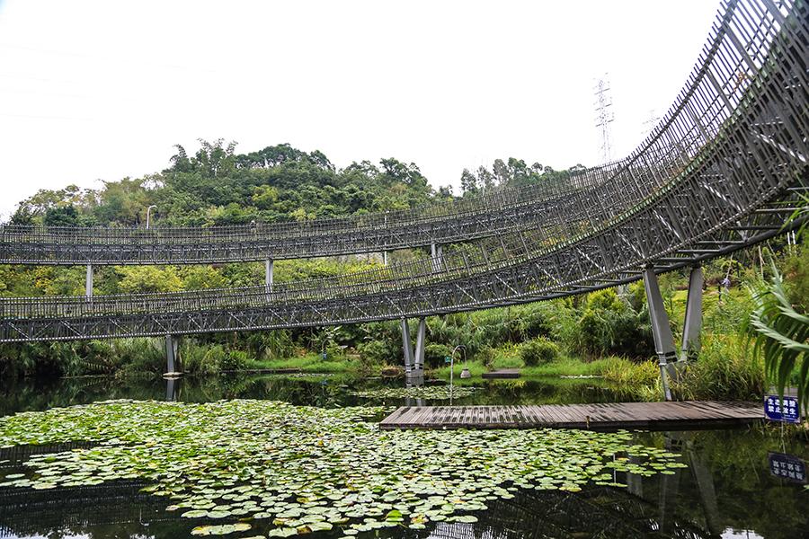 """【风从海上来】福州:""""网红""""福道让市民乐享绿色生态福利"""