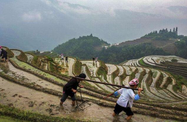 广西重拳打击拖欠农民工工资违法行为
