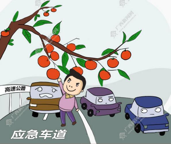 【新桂漫画】诱人的柿子